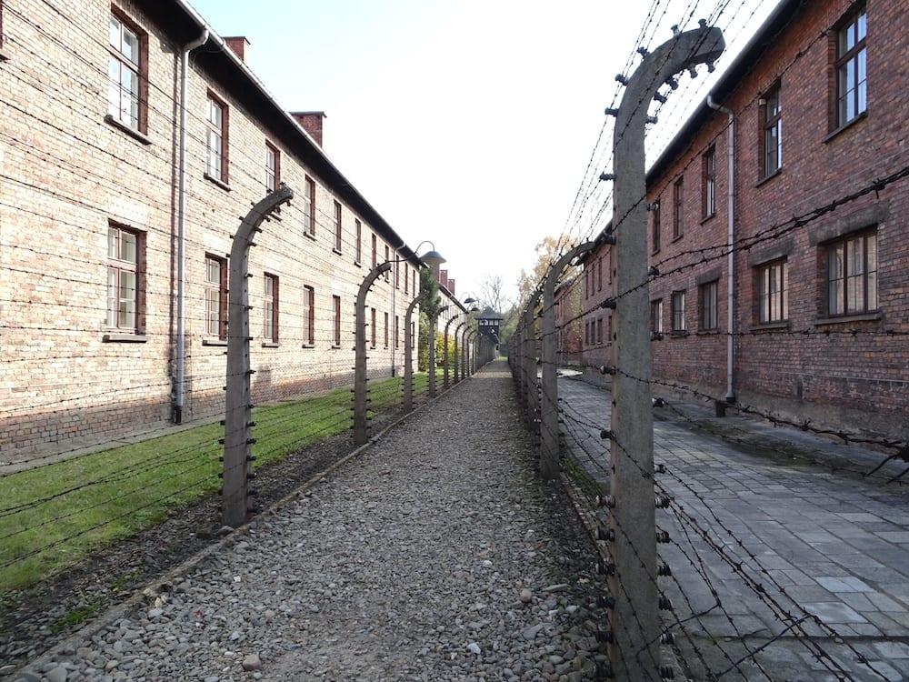 Auschwitz-Birkenau fence